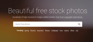 Stocksnap: Best Shutterstock Alternatives: Download Royalty Free Images