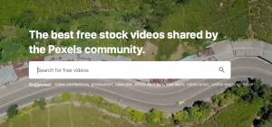 Pexels: Top 10 Sites to Download Royalty Free Stock Videos